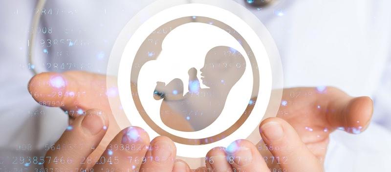 data leaks in fertility clinics
